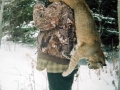 Guided Bobcat Hunts in Northern Wisconsin
