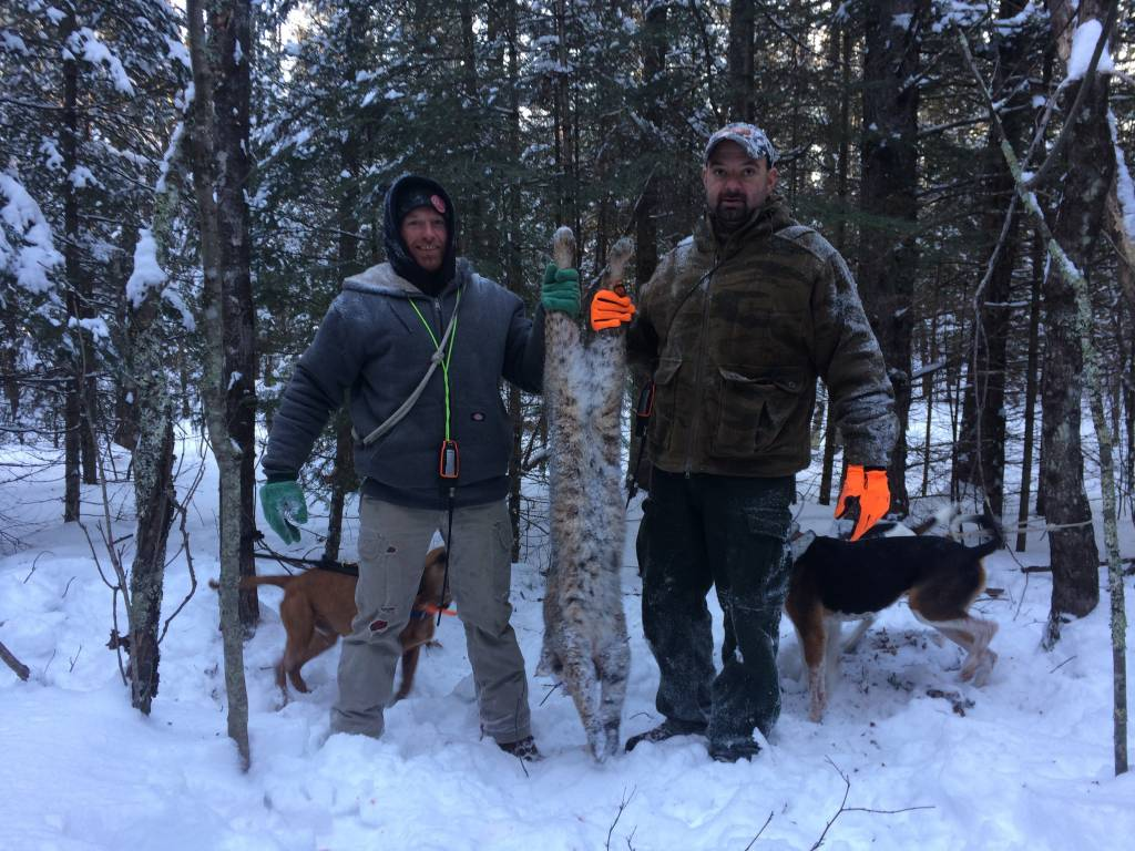 clam lake black singles Wisconsin hunting from $16000 clam lake guide & taxidermy provides guided hunts for wisconsin black bear (zone a & d), wolves, bobcat, coyotes an.