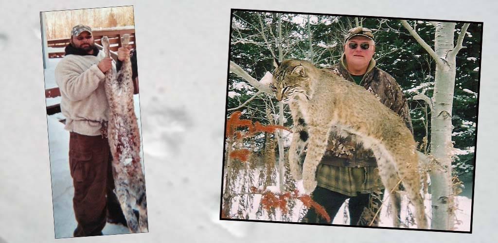 slide-wisconsin-bobcat-hunts